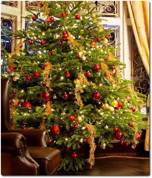 decoracao arvore de natal vermelha: para decoração de Árvores de Natal – Árvore com bolas vermelhas